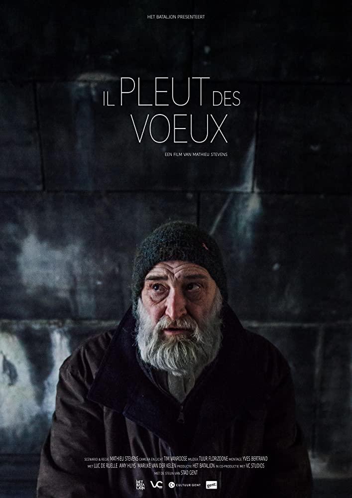 IlPleutDesVoeux_poster